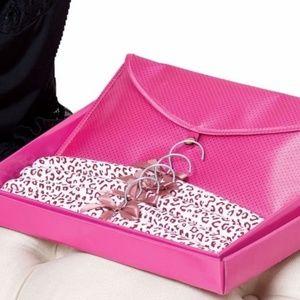 Lingerie Clothes Hanger and Pink Bag Set